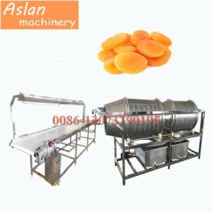 Grosella SECADO SECADO Lavado Máquina/máquina de limpieza de albaricoque secos y frutas deshidratadas la arandela