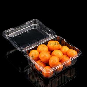 APETはチェリートマト及びオレンジのための透過プラスチック荷箱を取り除く