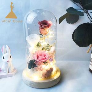 Conserves de rose des fleurs en verre pour Action de Grâces Noël Valentine de mariage