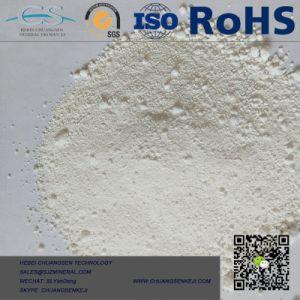 De witte Goede Prijs van het Dioxyde van het Titanium van Anatase van het Rutiel van het Pigment TiO2