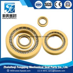 Гидравлический тефлоновой подложки под напряжением Seasl пружины из нержавеющей стали для цилиндра