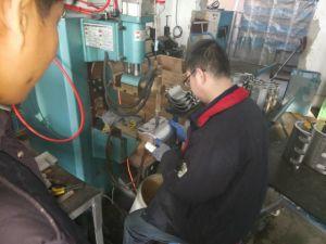 Accoppiamenti 12  o Dn300 di riparazione del tubo dell'acciaio inossidabile