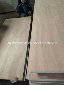 Pegamento de fenólico de 25 mm de suelo de madera contrachapada de contenedores
