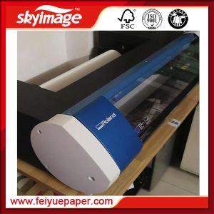 Roland 간접적인 대대 20 고속 인쇄를 위한 탁상용 잉크젯 프린터