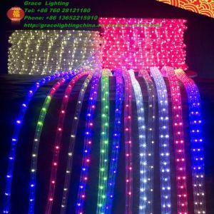 Salto e Scroll LED Light 5050 LED Strip (G-SMD5050-60-220V-JNS)