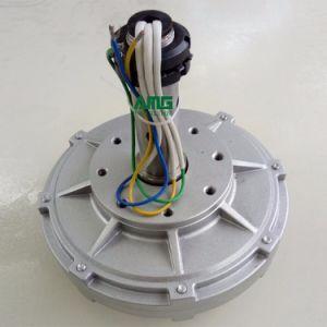 500W basse tr/min flux axial de l'alternateur à aimants permanents