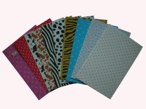 EVA Printing Sheet para School Used