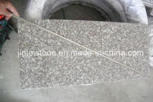 G664 Dunne Tegel van de Vloer van het Graniet van Bainbrook de Bruine/het Bedekken Tegel