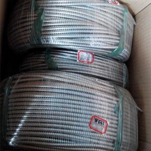 De Flexibele Elektrische Buis van het roestvrij staal
