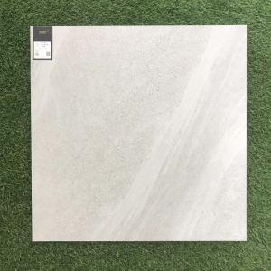 De Italiaanse Concept Verglaasde Tegel van de Vloer van het Porselein Ceramische (SHA601)