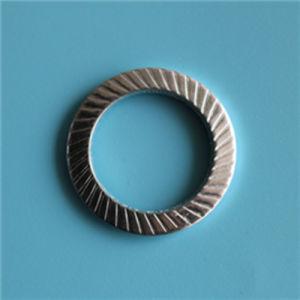 9250 S20 de la rondelle de sécurité en acier inoxydable