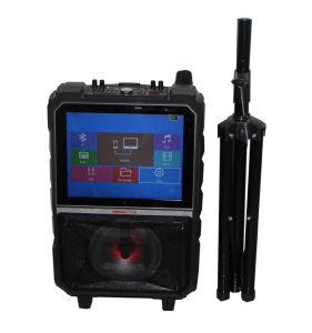 15 Zoll-im FreienTonanlage-Fachmann mit LCD-Bildschirm