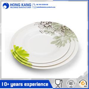 Parte de plástico multicolor de melamina de la cena de la placa de alimentos