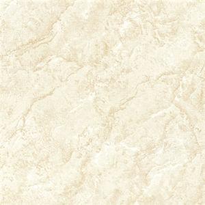 Le sel soluble Porcelalin Polished nano couvre de tuiles E36060)