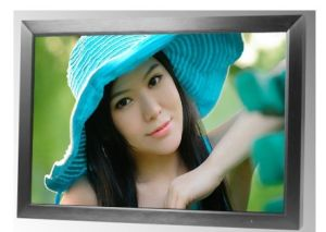 Grote Screen 46 LCD Monitor met Samsung TFT Panel