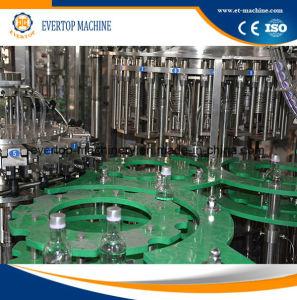 Automatische het Vullen van de Wijn Machine voor de Flessen van het Glas