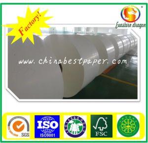 100lb Text C2S Art Paper