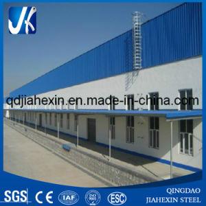 Entrepôt de Structure Métallique (JHXSW004)