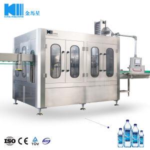 가득 차있는 자동적인 소규모 플라스틱 병 광수 플랜트 기계장치 비용