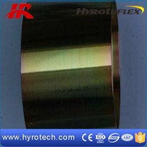 Puntali idraulici del tubo flessibile del SUS