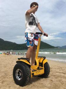 電気スクーターのトレーラー機能のバランスをとっているHoverboardsの電気自己