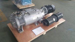 защита окружающей среды сухой винт вакуумный насос (LGB-30DV)