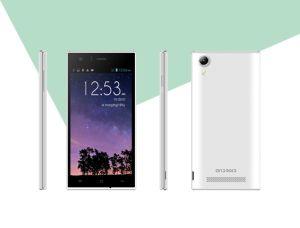 5.0 '' GSM van de Telefoon van de Vierling Core1.0GHz Androïde Telefoon