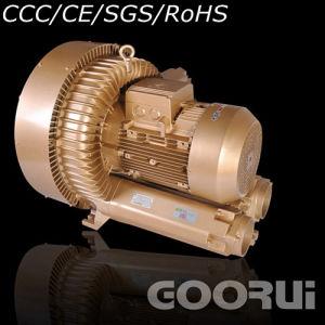 Soil Gas Extraction에 있는 고압 Vacuum Ring Pump