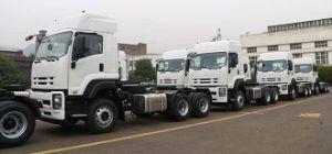 Caminhão pesado novo de Isuzu para a venda