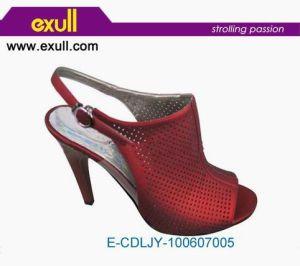 Mesdames Hot sandale (E-CDLJY-100607005)