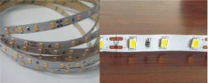 Indicatore luminoso di nastro luminoso eccellente di SMD5630 LED