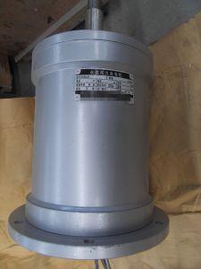 12kw generador de imán permanente vertical