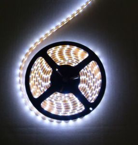 SMD 5050 LED Strip Light (MJJC-JP5050-W)