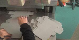 自動金属は紙箱については鋸歯の固定機械を