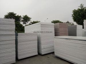[هيغ-ند] يغضّن فولاذ سندويتش سقف لوح لأنّ [بورتبل] بناية /House