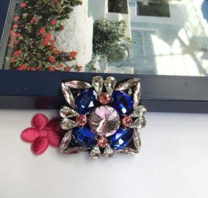 De Geparelde Flarden van het Bergkristal en van het Glas van de Toebehoren van de kleding Applique