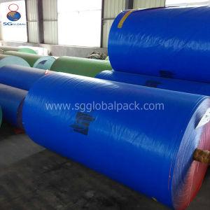 Wasserdichtes blaues PET beschichtete Plane in den verschiedenen Gewichten und in den Größen