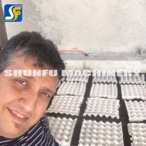 بيضة صينيّة آلة [أوتومتيك/] مهدورة [ببر بولب] بيضة صينيّة آلة