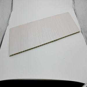 Accueil de l'environnement Panneaux muraux Prodtection WPC