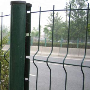 Galvanizado recubierto de PVC de 3D Mallas Soldadas valla valla de jardín