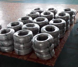 Condotto flessibile del cavo dell'acciaio inossidabile
