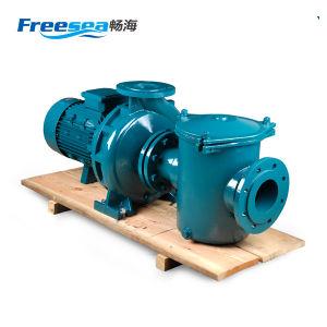 Bomba de água de esgoto submersível elétrico de ferro de alta qualidade