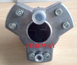 Alta pressione idraulica della pompa a pistone della pompa di tuffatore di Hawe R2.5A