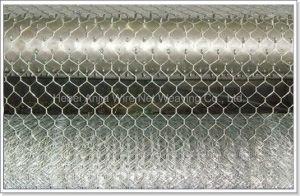 Цыпленок с покрытием из ПВХ оцинкованной проволоки с шестигранной головкой ячеистой сети