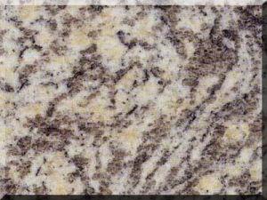 De mooie Tegel van de Vloer van het Bouwmateriaal van het Graniet van de Huid van de Tijger Roestige