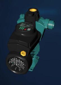リセットボタンが付いている国内銅線の電気自動水ポンプ