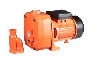 DP-Pumpe mit Extraejektor 0.75~1.5HP
