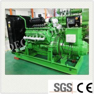 새로운 에너지 낮은 BTU 가스 발전기 세트 (200KW)