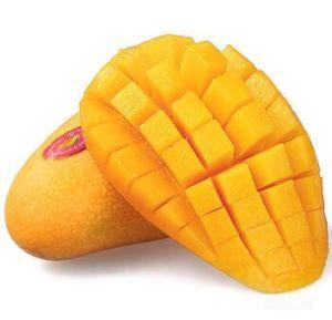 極度の品質のIQFによってフリーズされるマンゴのフルーツ