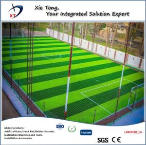 Todo profesional del diseño de césped artificial de fútbol Sistema presentaron 5 personas.